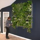 5 - 1.6m square of air filtering plants